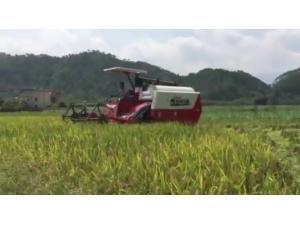 湖南龙舟农机股份有限公司-龙舟4LZ-4.0Z谷物联合收割机作业视频