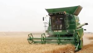 潤源4YZ-8大型玉米小麥聯合收割機作業視頻