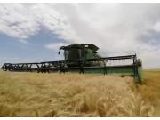 约翰迪尔S680小麦收割机作业视频