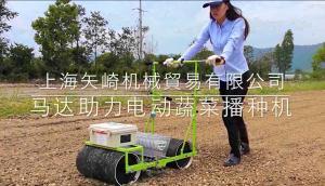 上海矢崎SYV蔬菜播种机视频