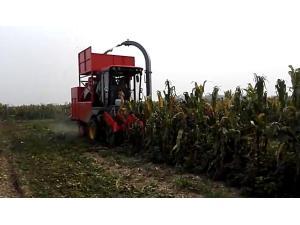河北英虎4YZB-4B型自走式茎穗兼收型玉米收获机作业视频