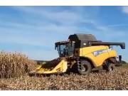 紐荷蘭CR980玉米收割機作業視頻