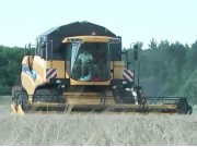 紐荷蘭CX6080大型收割機作業視頻