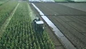 九方泰禾迪马飞龙玉米机作业视频