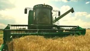 迪马DM800小麦收割机作业视频