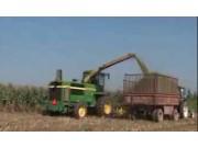青贮玉米机械化收割技术