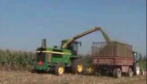青貯玉米機械化收割技術