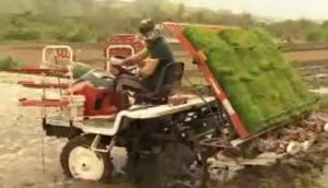 水稻高速插秧機使用與維護