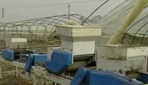 水稻盘育秧播种机使用与维护