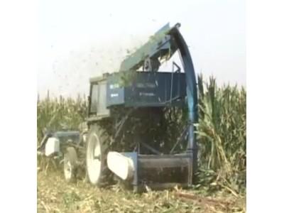 玉米联合收获机的安全使用和调整规则