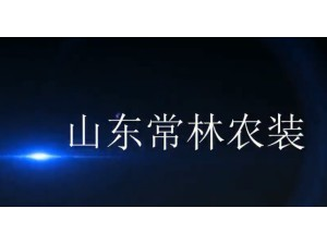 2016山东常林公司宣传