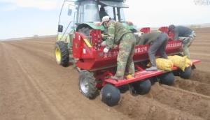 洪珠四行微型薯播种机在内蒙作业视频