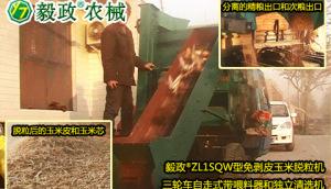 毅政牌ZL1SQW型三輪車自走式帶喂料器和獨立清選機的免剝皮玉米脫粒機操作視頻
