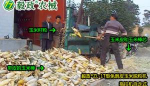 毅政牌ZL1T型免剝皮玉米脫粒機操作視頻