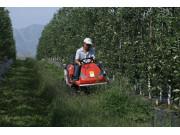 中农博远坐骑式割草机作业视频