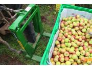 中农博远7T-400型果园叉车作业视频