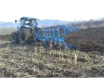 郑州龙丰B550镜面犁配套东方红2204新疆博乐86团高茬玉米地耕作视频