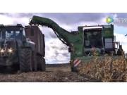 比利時AVRPUMA Plus系列土豆收獲機