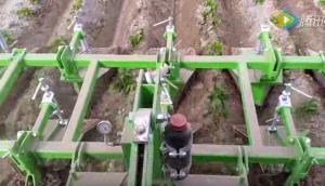 比利時AVR公司Ecoridger土豆除草機