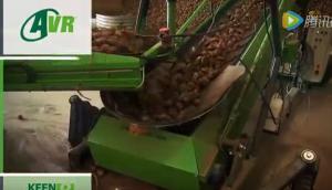 比利时AVR公司土豆设备2015