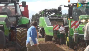 比利时AVR公司2012欧洲土豆产品会