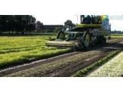 Ploeger公司AR系列根茎作物收获机