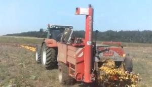 斯太爾拖拉機牽引Moty南瓜籽收獲機-作業視頻