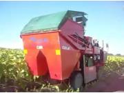 COMAN公司自走式单行烟草收获机-作业视频