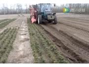 西蒙RPTC系列灌木起收機