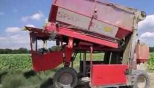 SPAPPERI公司RA632煙草收獲機-作業視頻