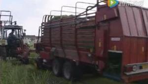 Supertino公司牧草直收饲喂车