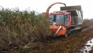 Pisten公司自走式芦苇粉碎机-作业视频