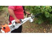 STIHL手持式小型摇树机-作业视频