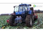 Koolrooier公司卷心菜收獲機-作業視頻