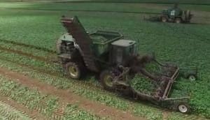 VOGEL公司V3自走式黃瓜收獲機-作業視頻