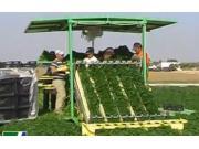 Hortech公司SlideTW蔬菜收獲機-作業視頻