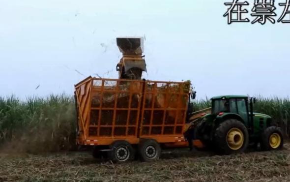 廣西柳工4GQ-350甘蔗收獲機大型機實地運行視頻