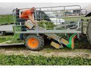 ORTOMEC公司4000系列蔬菜收獲機-作業視頻