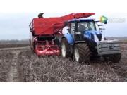 迪沃夫RJA2060型牽引式馬鈴薯收獲機作業