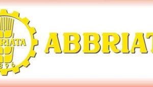 Abbriata公司M61 Export方捆打包机-作业视频
