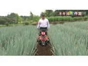 洋马RK750K手扶式大葱培土机
