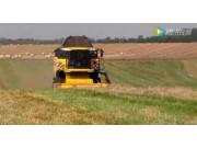 ZAFFRANI公司牧草撿拾臺配紐荷蘭CX8080收割機