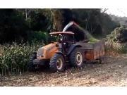 朱米尔公司JM4200SH背负式青贮收获机-作业视频