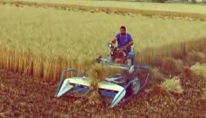 BCS公司割捆機收割水稻