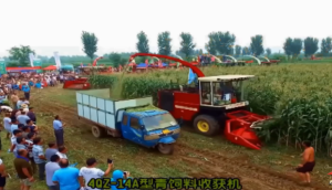 农哈哈4QZ-14A型青贮机收获机作业视频