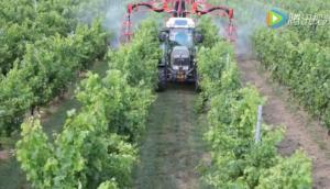馬斯奇奧AIRDROP系列田園用噴霧機