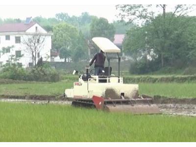 沃得猛龙_WD3100A一体式履带旋耕机作业视频