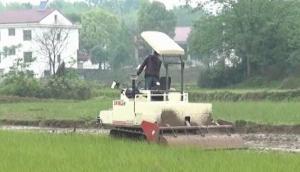 沃得猛龍_WD3100A一體式履帶旋耕機作業視頻