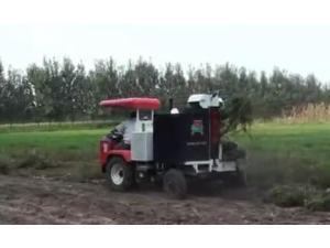 山东常林公司单行花生收获机-作业视频