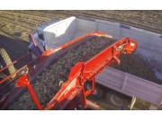 SPUNIK公司5744型土豆收获机